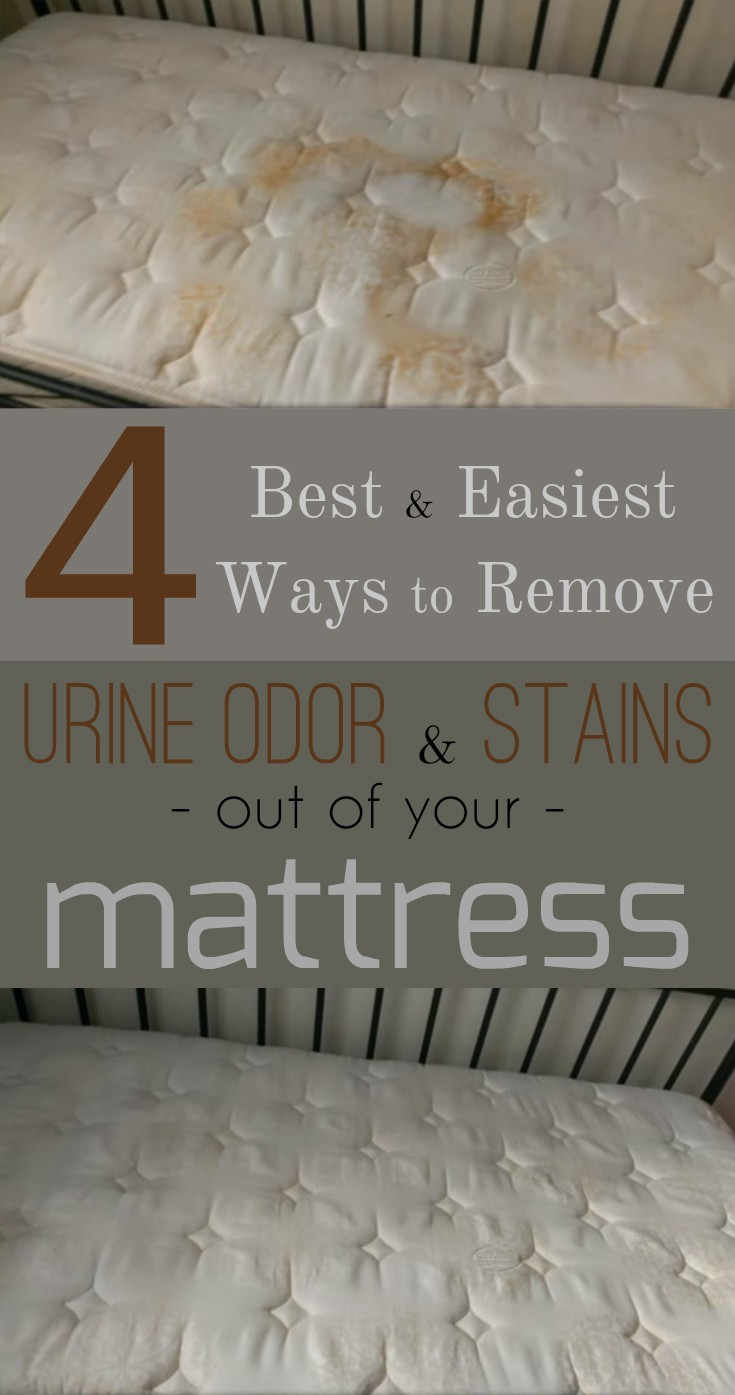 4 best and easiest ways to remove urine odor and stains out of your mattress cleaning. Black Bedroom Furniture Sets. Home Design Ideas