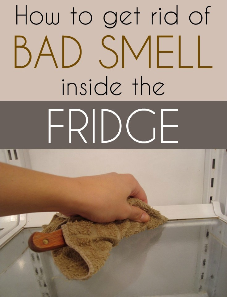 Cool How To Get Rid Of Bad Smell Gallery Best Idea Home