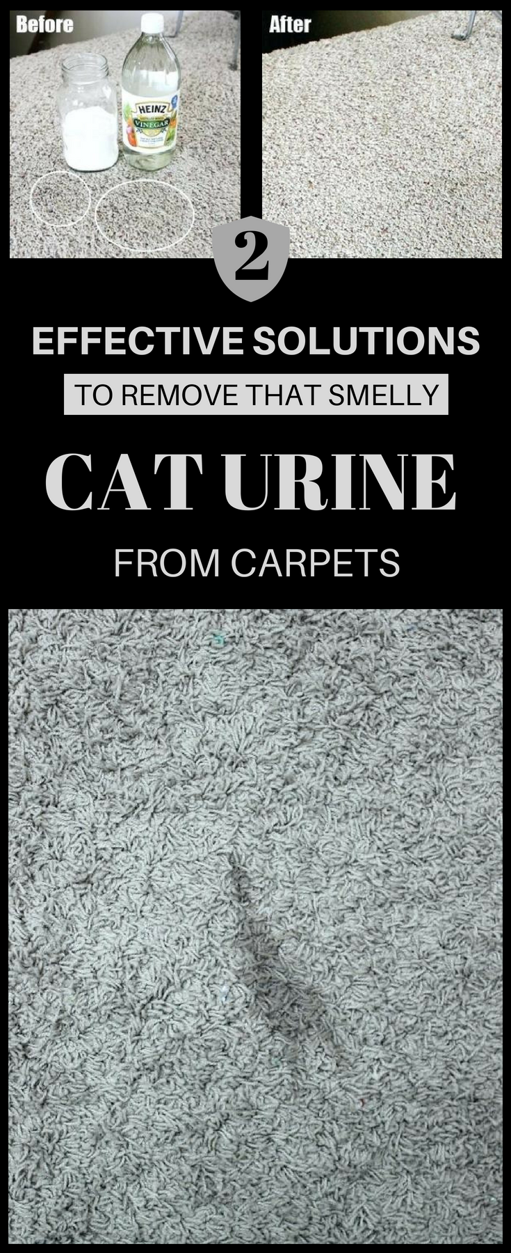 2 Effective Solutions To Remove That Smelly Cat Urine From Carpets