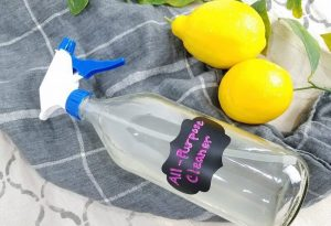 Best All Purpose Homemade Cleaner To Remove Any Trace Of Dirt