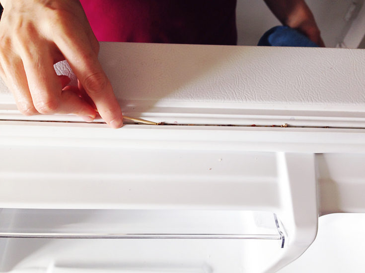 Great Home Hack To Remove Mildew On Fridge Gasket